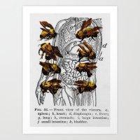 bees Art Print