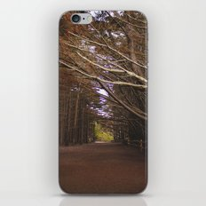 Light Fall iPhone & iPod Skin