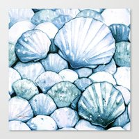 Sea Shells Teal Canvas Print