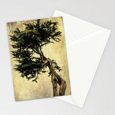 Cypress Tree Stationery Cards