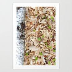 forest magic - marie Art Print