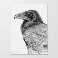 Sketchy Raven Study Canvas Print