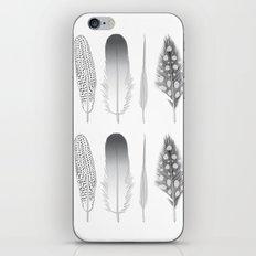 Feathers Trio iPhone & iPod Skin