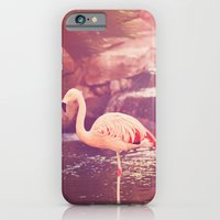 iPhone & iPod Case featuring Pink Flamingo by Jessica Torres Photography