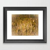 Cattails Framed Art Print