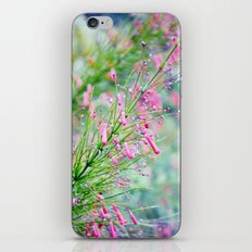 In the Throes of Spring iPhone & iPod Skin