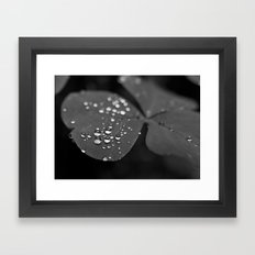 Water drops  Framed Art Print