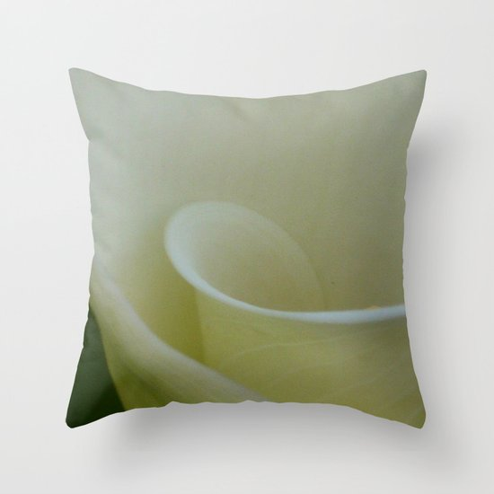 Inside the world Throw Pillow