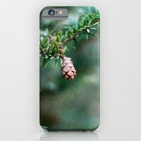 Tiny Pine Cone iPhone 6 Slim Case