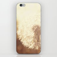 Dandelion Sunset iPhone & iPod Skin