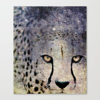 Cheetah, Namibia Canvas Print