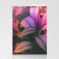 Violet Ladder Stationery Cards