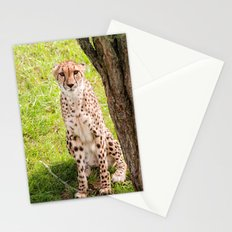 Hey Kitty Stationery Cards