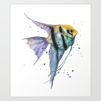 Angelfish, tropical fish, angel fish, animal art prints Art Print