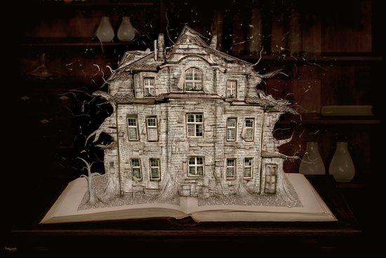 Die Geschichte der Villa... Art Print