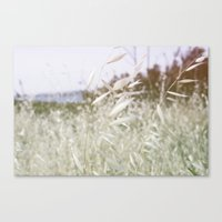 In The Hills Canvas Print