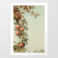 The Orchard Skies Art Print