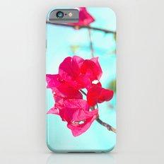 Jamaican Bogenvia iPhone 6 Slim Case