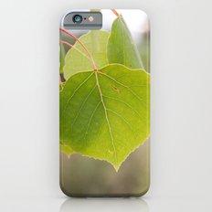 Aspen Green iPhone 6 Slim Case