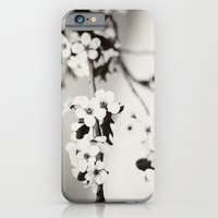 iPhone & iPod Case featuring Cherry Blossoms (Black and White) by castle on a cloud