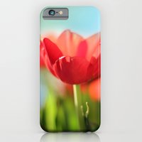 RED TULIPS IN THE SUN iPhone 6 Slim Case