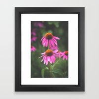 Truth Unknown Framed Art Print