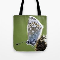 Common Blue Butterfly 2 Tote Bag