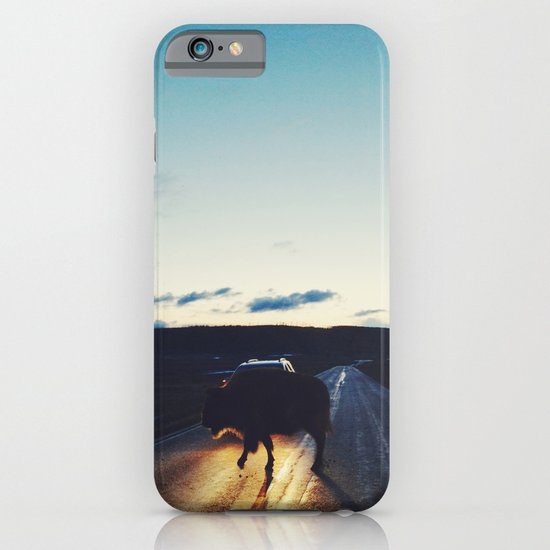 Bison in the Headlights iPhone & iPod Case