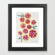 Framed Art Print featuring Sliced Grapefruits Water… by Cat Coquillette