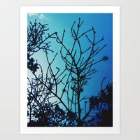 Cold As The Morning Art Print