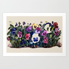 Pansies Watercolor Art Print