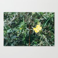 One Canvas Print