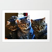 What's Over There? Art Print