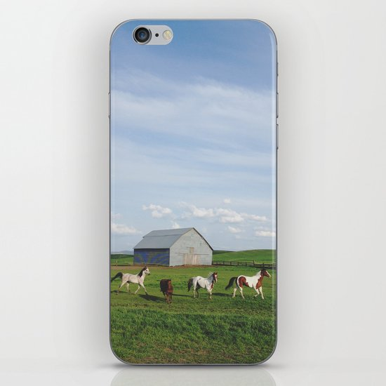 Farm Horses iPhone & iPod Skin