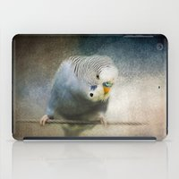 The Budgie Collection - Budgie 3 iPad Case