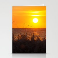 Sun + Surf Stationery Cards