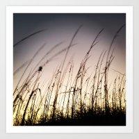 Sunset On Tybee Art Print