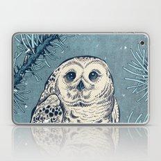Winter Snowy Owl Laptop & iPad Skin