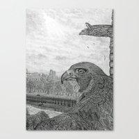 The Urban Peregrine Canvas Print