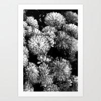 White Gold (w/straight B… Art Print
