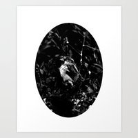 On The Side Of The Bird'… Art Print