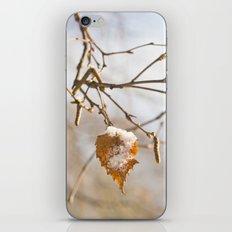 Winter wonders iPhone & iPod Skin