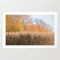 Late Autumn Art Print