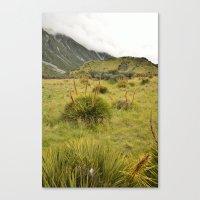 Grassy Landscape Canvas Print