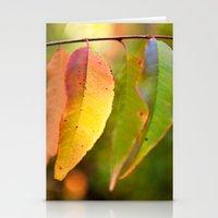 Chameleon Leaves Stationery Cards