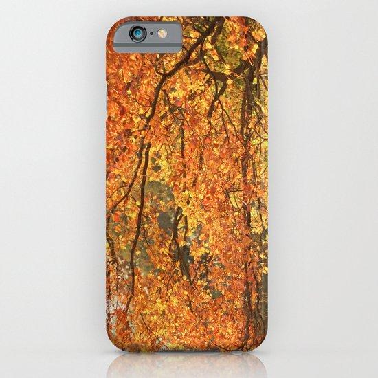 Autumn II iPhone & iPod Case