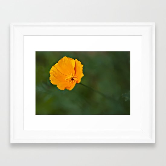 Green and Gold Framed Art Print