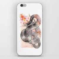 Glowing Corn Snake iPhone & iPod Skin