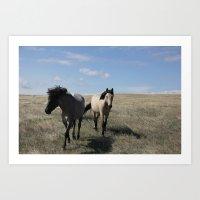 Mustangs Follow Art Print