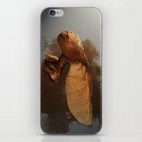 Maple Fey  iPhone & iPod Skin